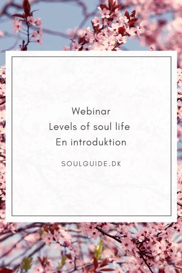 Webinar en introduktion til Levels of Soul life